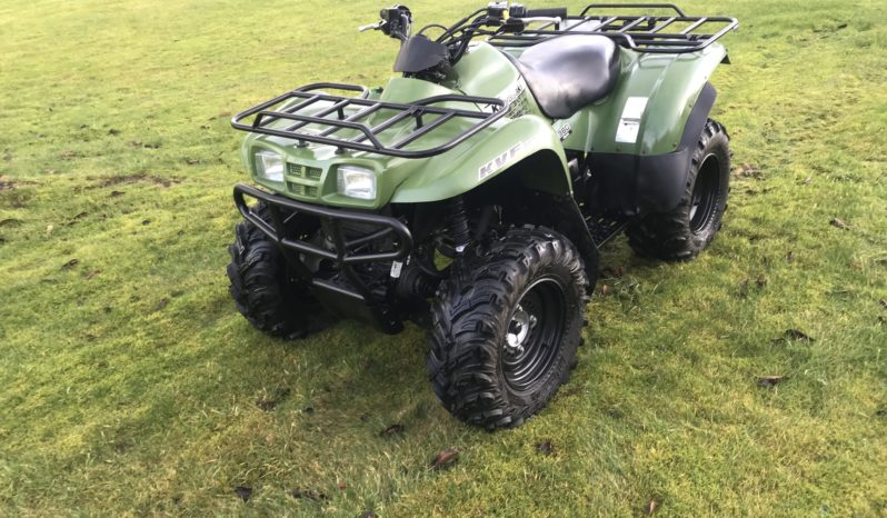 Yamaha Grizzly 350 full