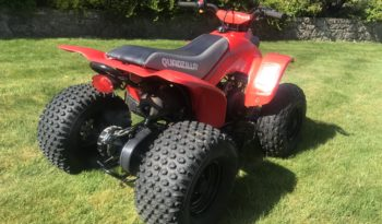 Quadzilla R100 full